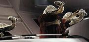 Ithorianer im Senat
