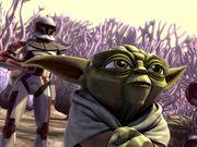 Yoda & Thire