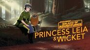 Princess Leia - An Unexpected Friend Star Wars Galaxy of Adventures