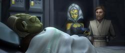Rig-Nema-begutachtet-Yoda