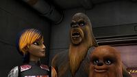 Sabine und Wookiees