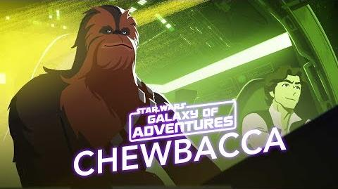Chewbacca - The Trusty Co-Pilot Star Wars Galaxy of Adventures