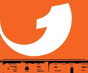 Logo Kabel eins