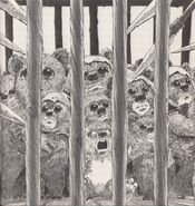 Gefangene Ewoks