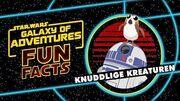 STAR WARS – GALAXY OF ADVENTURES FUN FACTS Knuddlige Kreaturen Star Wars Kids