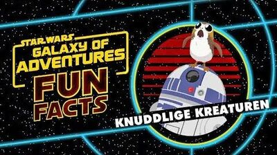 STAR WARS – GALAXY OF ADVENTURES FUN FACTS Knuddlige Kreaturen Star Wars Kids