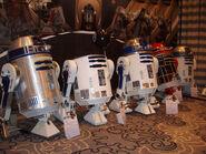 Jedi-Con 2008 (15)