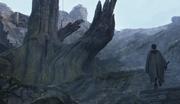 Rey bei der Baum-Bibliothek