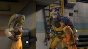 Hera gibt Zeb und Ezra einen Auftrag