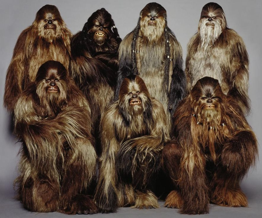 Wookiegruppe