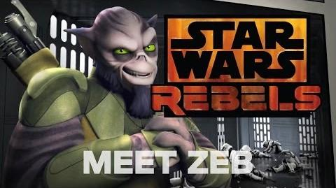 Star Wars Rebels Meet Zeb, the Muscle