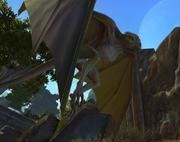 Flügelschlund in Gnarls