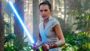Rey im Wald trainiert