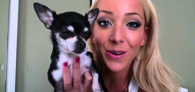 File:Jenna-marbles-dog-e1492705728859.jpg