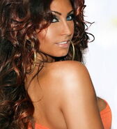 Tracy dimarco