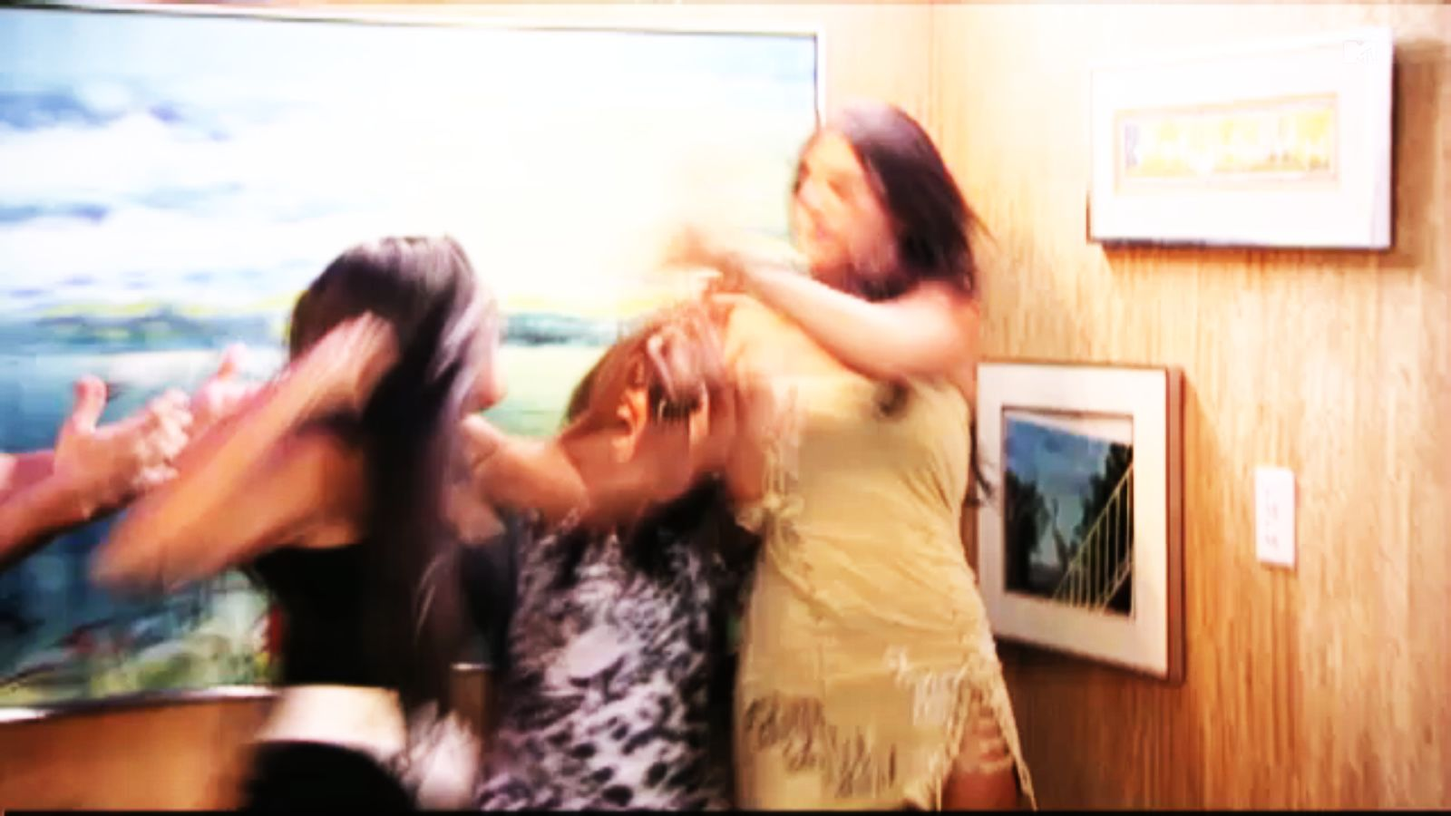 Jwoww-sammie-fight
