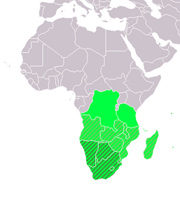 LocationSouthernAfrica