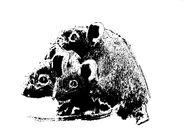 Three mice Silhouette