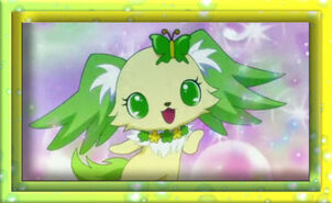 Jewelpet22