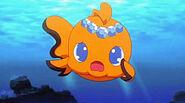 Aqua14