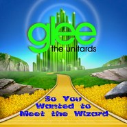 So You Wanted to Meet the Wizard