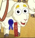 Dora sheep