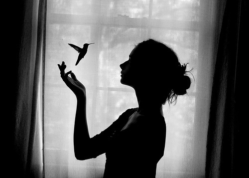 Bird black and white girl photography pretty favim com 426415 jpg