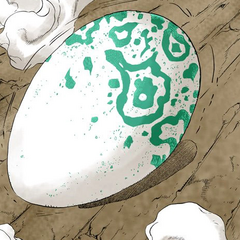 Echoes as an egg