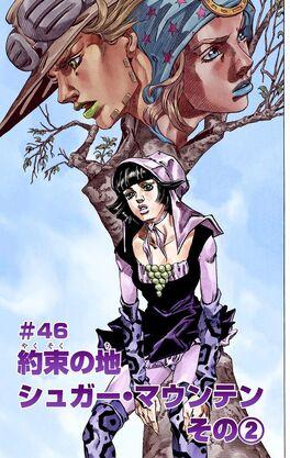 SBR Chapter 46