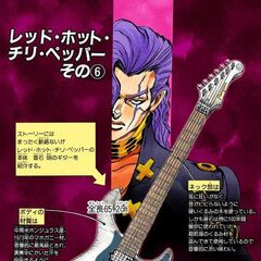 Description of Otoishi's guitar
