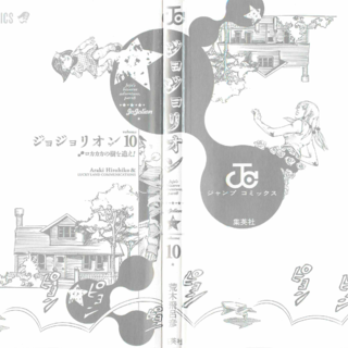 The cover of Volume 10 without the dust jacket