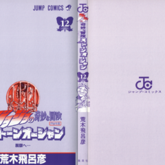 The cover of Volume 12 without the dust jacket