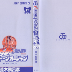 The cover of Volume 17 without the dust jacket