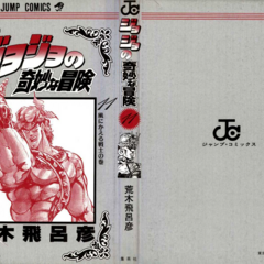 The cover of Volume 11 without the dust jacket