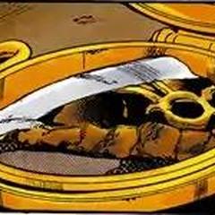 Arrow shard in Jolyne's pendant