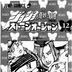 The illustration found in Volume 12