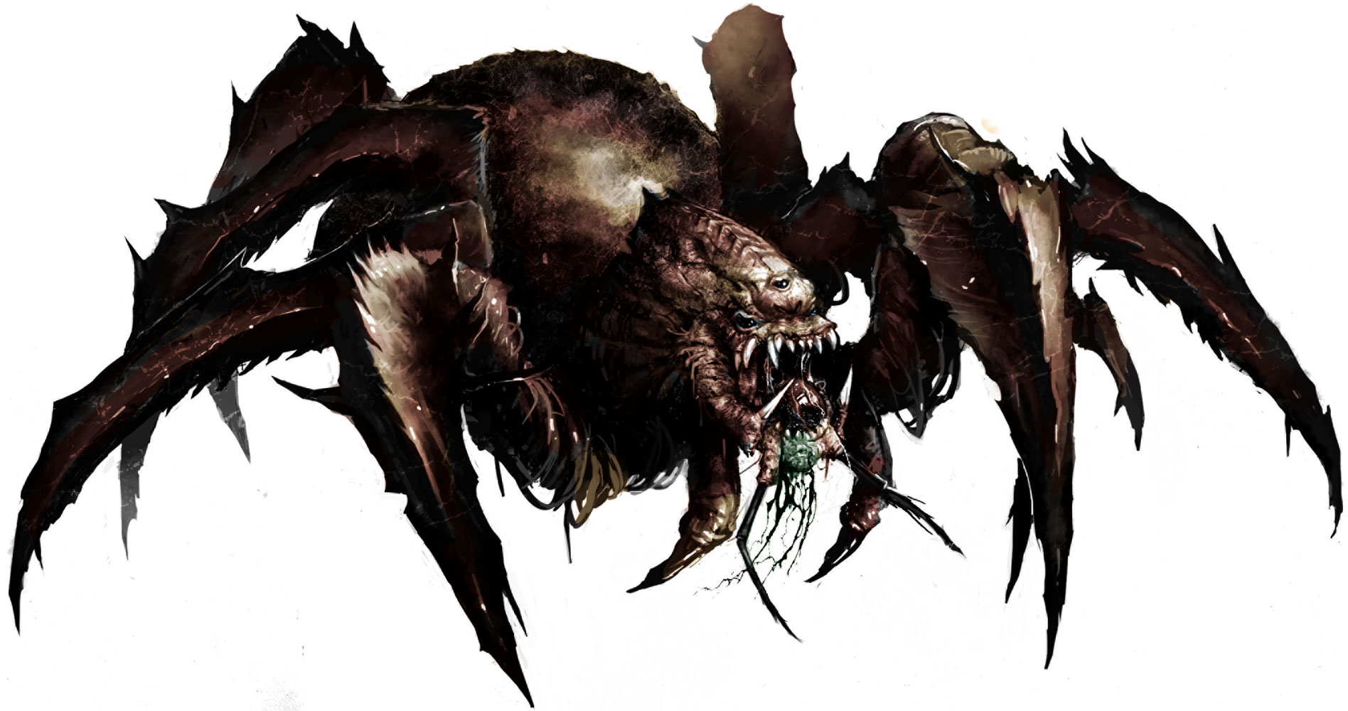 Image result for giant spiders d&d