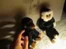 Custody Wars: Part 1