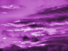 Gloomy Purple