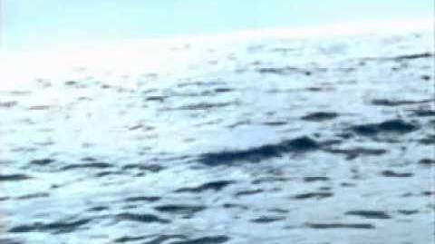 H2O 2002-1