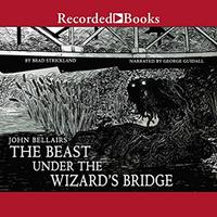 The Beast under the Wizard's Bridge (US, 2018) CD