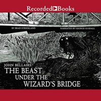 The Beast under the Wizard's Bridge (US, 2018) CD