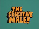 The Sensitive Male!