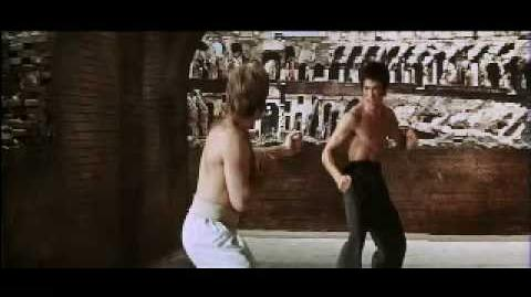 Bruce Lee Vs Chuck Norris (Way of the Dragon) Climactic Fight to Death-0