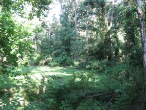 Center Of Camp