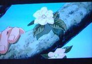 JoJo movie Jonathab Hamon blossom flowers
