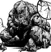 Rock Human