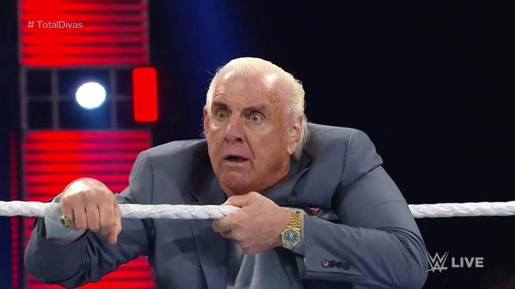 image shocked ric flair jpg joke battles wikia fandom powered