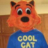 Cool Cat (Twitter)