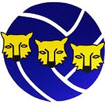Logo karhut